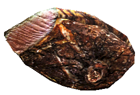 Deathclaw steak.png